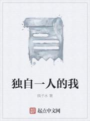 《独自一人的我》小说封面