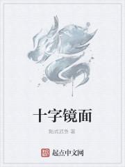 《十字镜面》作者:陆式迟鱼