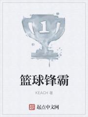 《篮球锋霸》小说封面