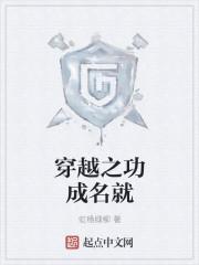 《穿越之功成名就》小说封面