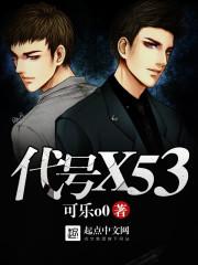 代号X53