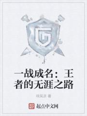 《一战成名:王者的无涯之路》小说封面