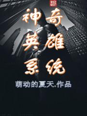 《神奇英雄系统》小说封面