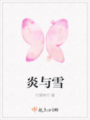 《炎与雪》小说封面