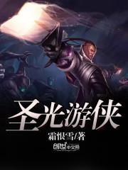 《圣光游侠》小说封面