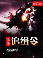 《江湖追缉令》小说封面