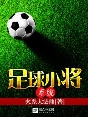 足球小将系统