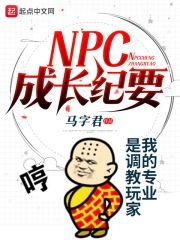 NPC成长纪要