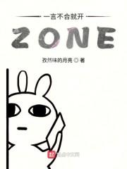 一言不合就开ZONE
