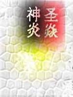 《圣焱神炎》作者:本枫