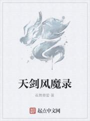 《天剑风魔录》作者:花舞葬爱