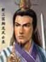 《新三国翔龙风云录》作者:龙成羽丰
