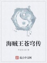 《海贼王苍穹传》作者:李宏悦