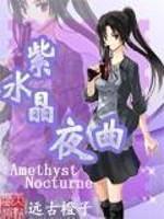 《紫水晶夜曲》作者:远古橙子.QD