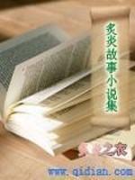 《炙炎故事小说集》小说封面