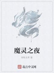 《魔灵之夜》小说封面
