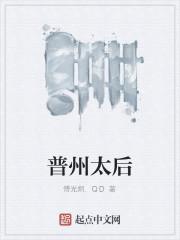 《普州太后》作者:傅光炯.QD