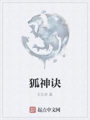 《狐神诀》作者:王文卓
