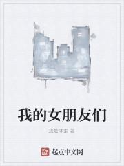 《我的女朋友们》小说封面