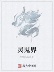 《灵鬼界》小说封面