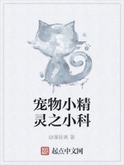 《宠物小精灵之小科》作者:动漫狂者