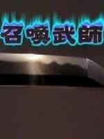 《召唤武师》作者:枫成.QD