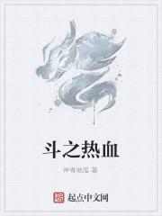《斗之热血》小说封面