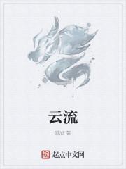 《云流》小说封面
