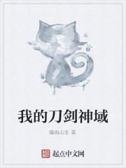 《我的刀剑神域》作者:魔由心生.QD