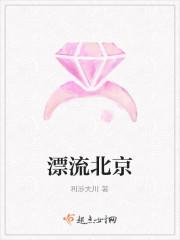 《漂流北京》小说封面
