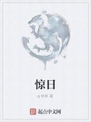 《惊日》小说封面