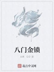 《八门金锁》小说封面