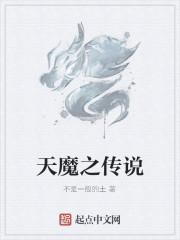 《天魔之传说》小说封面
