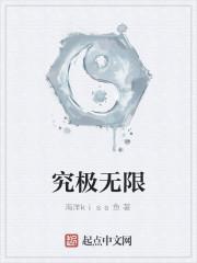 《究极无限》小说封面