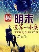 《明末边军一小兵》作者:老白牛