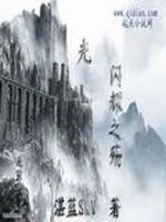 《光闪耀之殇》小说封面