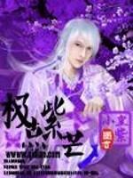 《极点紫芒》小说封面