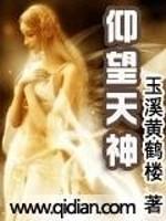 《仰望天神》小说封面