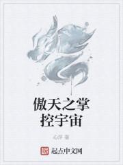《傲天之掌控宇宙》小说封面