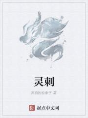 《灵刺》小说封面