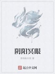 《阴阳冥眼》小说封面