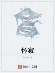 《怀寂》小说封面