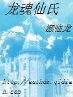 《龙魂仙氏》小说封面