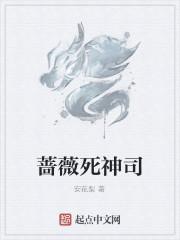 《蔷薇死神司》小说封面