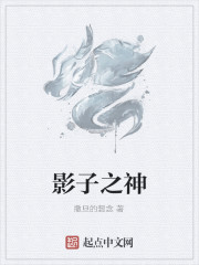 《影子之神》小说封面