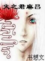 《火之君麻吕》小说封面