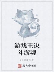 《游戏王决斗游魂》小说封面