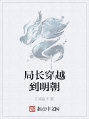 《局长穿越到明朝》作者:江城山下