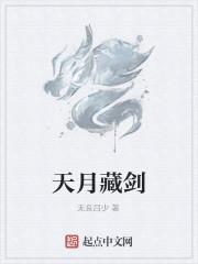 《天月藏剑》小说封面
