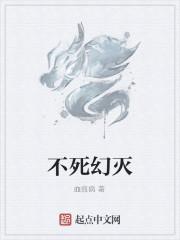 《不死幻灭》小说封面